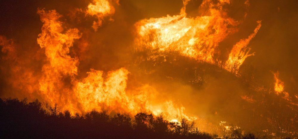 Podcast: Wie wirken sich Buschfeuer aufs Klima aus?