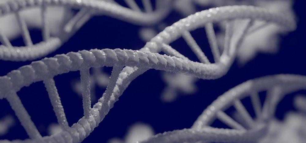 Kann man das Aussehen eines Menschen an den Genen ablesen?