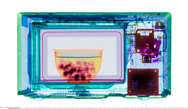 Was ist energetisch günstiger: Mikrowelle oder Pfanne?