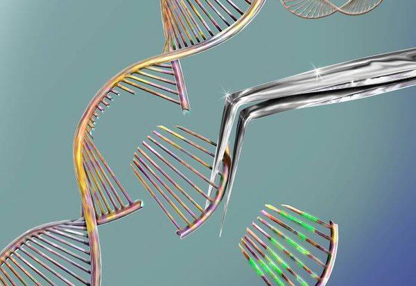 Was bringt Gentherapie?